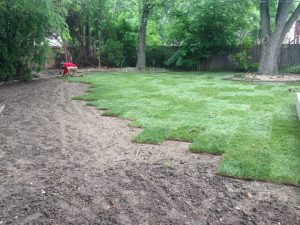 sodding large yard