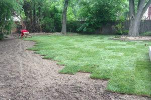 sod installation service